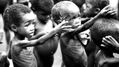 Photo of I WASN'T THERE IN 1967 TO ASK OJUKWU TO CHANGE STRATEGY;THANK GOD I'M HERE NOW – NGOZI ODUMUKO